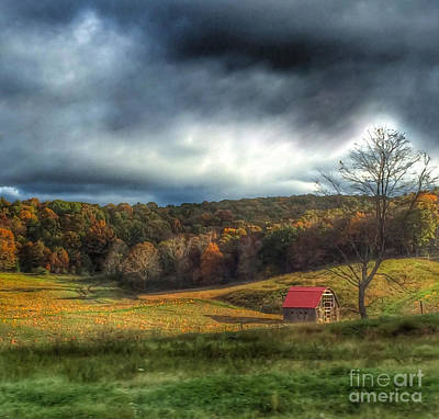 Photograph - Pumpkin Farm by Kerri Farley