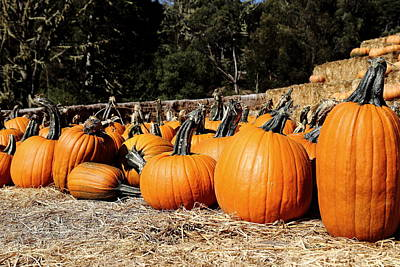 Olantern Photograph - Pumpkin Goofing Off by Scott Hill