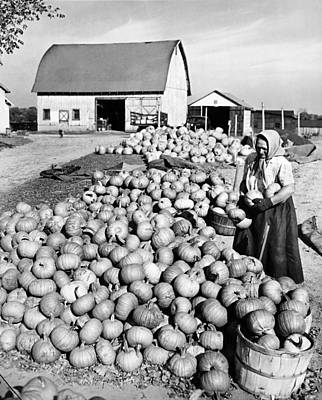 Farm Scenes Photograph - Pumpkin Harvest by Underwood Archives