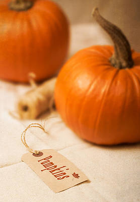 Gourds Photograph - Pumpkin Label by Amanda Elwell