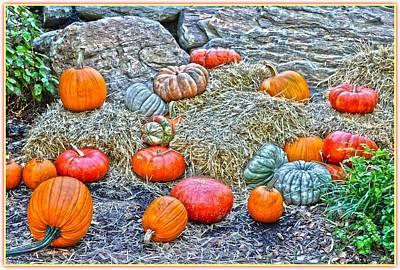 Olantern Photograph - Pumpkin Land by Sonali Gangane