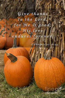 Photograph - Pumpkin Patch With Scripture by Jill Lang