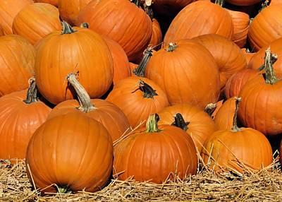 Photograph - Pumpkin Pile by Janice Drew