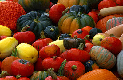 Photograph - Pumpkin Pile Too by Cathy Shiflett