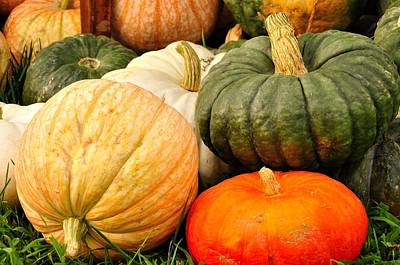 Pumpkin Pleasure Art Print by Gene Sherrill