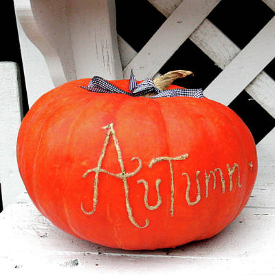 Photograph - Pumpkin Time by Art Block Collections