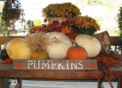 Pumpkin Welcome  Art Print by Barbara McDevitt