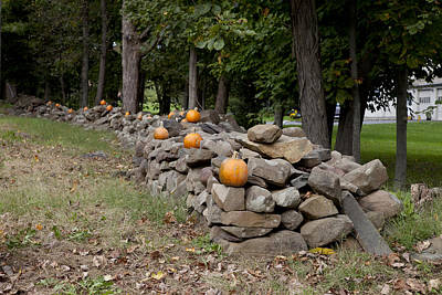 Photograph - Pumpkins Adorn A Connecticut Stone Fence by Carol M Highsmith