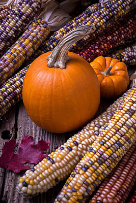 Red Leaves Photograph - Pumpkins And Corn by Garry Gay