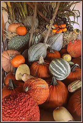 Pumpkins And Gourds Original by Dora Sofia Caputo Photographic Art and Design