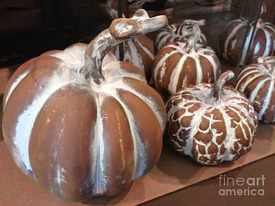 Of Autumn Photograph - Pumpkins And Gourds Fall Autumn Brown White Pumpkins - Colors Of Autumn by Kathy Fornal