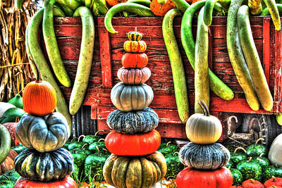 Pumpkins And Gourds Art Print by Linda Segerson