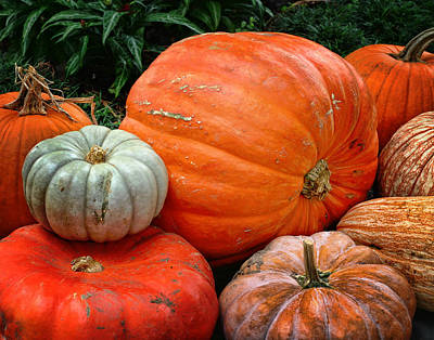 Photograph - Pumpkins And More					 by David and Carol Kelly