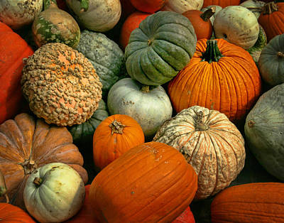 Photograph - Pumpkins And Squash					 by David and Carol Kelly