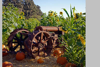 Pumpkins And Tractor Original by Kathy Sidjakov