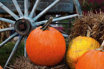 Wooden Farm Wagon Photograph - Pumpkins And Wagon Wheel  Stowe by Jenna Szerlag