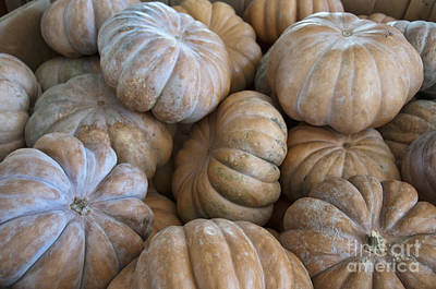 Photograph - Pumpkins At Market by David Arment