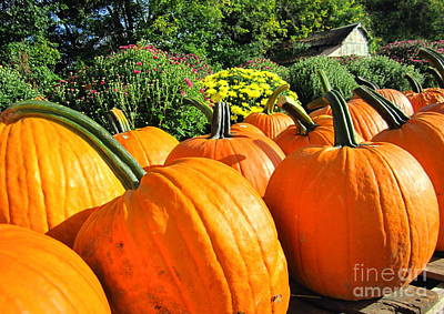 Photograph - Pumpkins For Sale by Cynthia  Clark