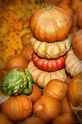 Photograph - Pumpkins Galore					 by David and Carol Kelly