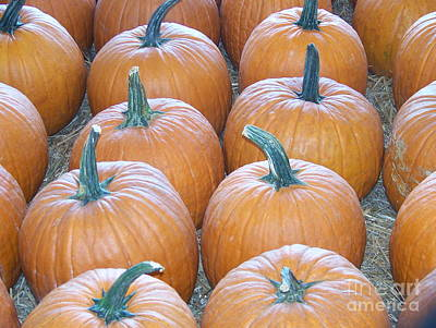 Photograph - Pumpkins Galore by Kevin Croitz