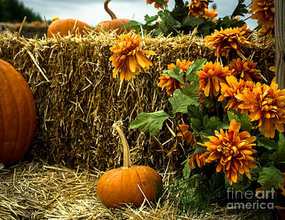 Photograph - Pumpkins Hay And Artificial Flowers by Imagery by Charly
