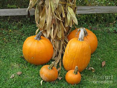 Just Desserts - Pumpkins on Display by Ann Horn