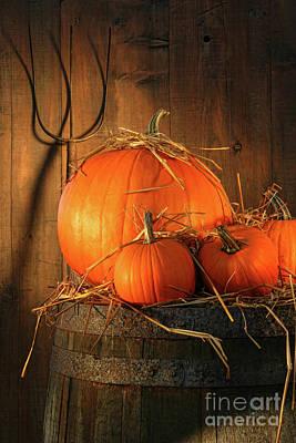 Pumpkins On Wine Barrel  Art Print by Sandra Cunningham