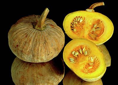 Maxima Wall Art - Photograph - Pumpkins by Th Foto-werbung/science Photo Library