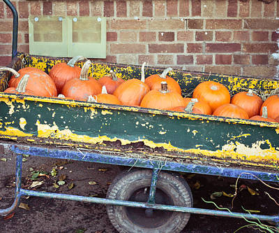 Pumpkin Patch Photograph - Pumpkins by Tom Gowanlock