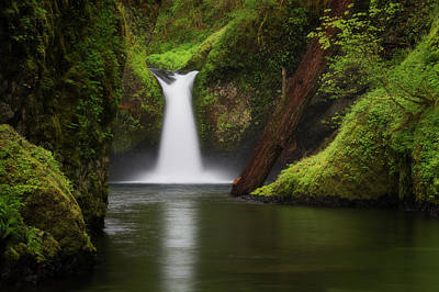 Punchbowl Falls, Columbia River Gorge Art Print by Robert Postma
