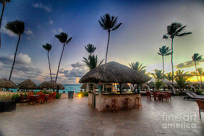 Photograph - Punta Cana Beach Bar by Tony Cooper