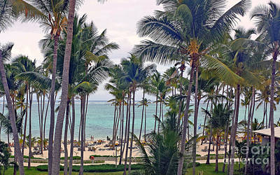 Photograph - Punta Cana  by Kay Novy