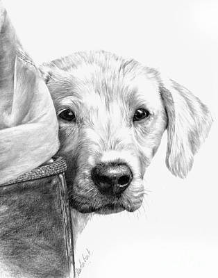 Puppies And Wellies Art Print
