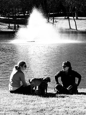 Good Charlotte Photograph - Puppies Play Date At The Park by Robert Yaeger