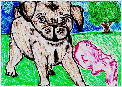 Daisy Drawing - Puppy Daisy Red Blanket Outside by Shaunna Juuti