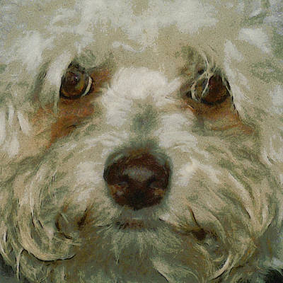 Puppy Digital Art - Puppy Eyes by Ernie Echols