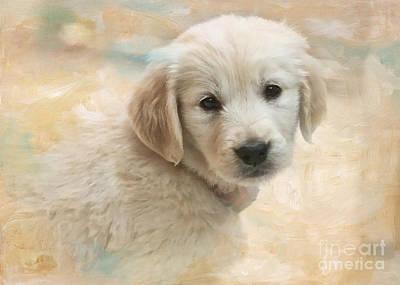 Puppy Eyes Art Print by Jayne Carney
