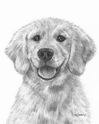 Drawing - Puppy Golden Retriever by Kate Sumners