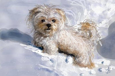 Terrier Digital Art - Puppy In Snow  by Angie Braun