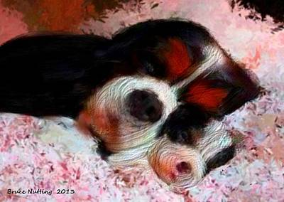 Puppy Love Art Print by Bruce Nutting