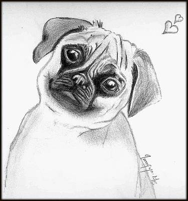 Drawing - Puppy  by Poornima M