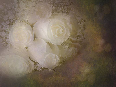 Digital Art - Pure Roses by Susan Candelario