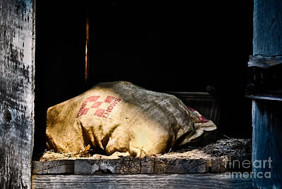 Photograph - Purina Feed Sack In Loft by Greg Jackson