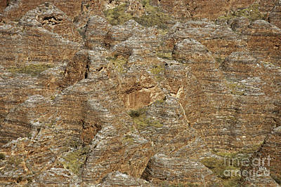 Photograph - Purnululu National Park Australia 3 by Rudi Prott