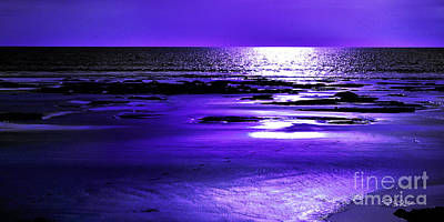 Photograph - Purple Afternoon by Phill Petrovic