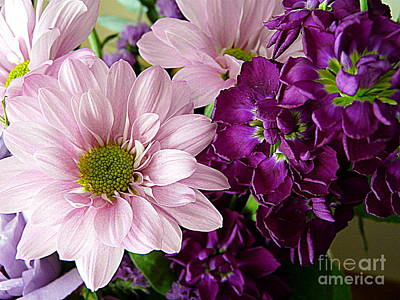Photograph - Purple And Pink by Avis  Noelle