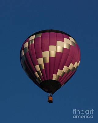 Photograph - Purple And White Balloon by Mark McReynolds
