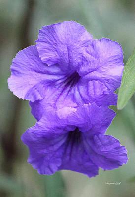 Purple Flowers Digital Art - Purple Bells II by Suzanne Gaff