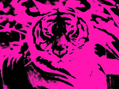 Photograph - Magical Purple Bengal Tiger by Belinda Lee