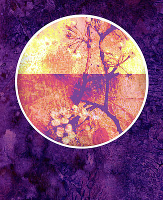 Pear Mixed Media - Purple Blossom by Ann Powell